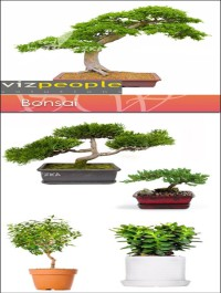 VizPeople Bonsai