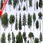 Evermotion Textures4ever vol 8 Trees