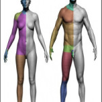 3D Scan Store Male and Female Base Mesh Bundle