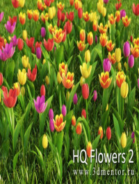 3DMentor HD Flowers vol 2 Tulips