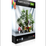 CGAxis Plants Collection C4D