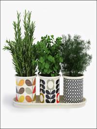Orla Kiely 3 Herb Pots With Tray