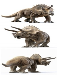 Best model of the week triceratops