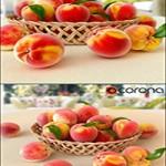 Peaches in a Wicker Basket