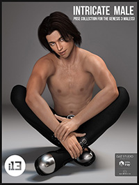 i13 Intricate Male Pose Collection for the Genesis 3 Male(s)