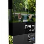 CGAxis Models Volume 34 Trees IV