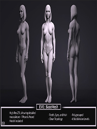 Female BaseMesh - Eve - ZTool 4R8
