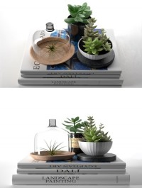 Cgtrader Books with Succulents and Air Plant 3D model