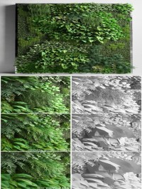 Cgtrader Vertical Garden 2 3D model