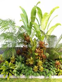 Palm composition 3D model