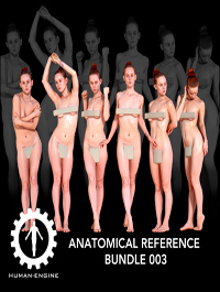 3d scan - Anatomical reference bundle 003