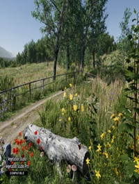 Meadow Environment Dynamic Nature