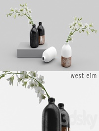 Westelm vases with Orchids