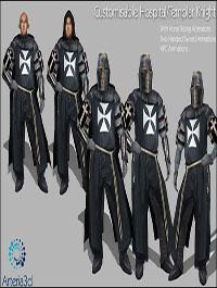 Arteria 3D Templar Knight