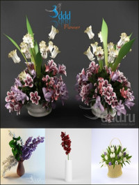 3DDD Flower highres models
