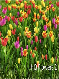 HD Flowers vol.2 for Cinema4D