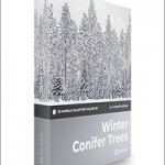 CGAxis Volume 98 Winter Conifer Trees Collection