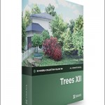 CGAxis Trees 3D Models Collection – Volume 109