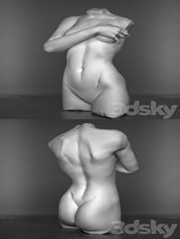 The torso of a female figure