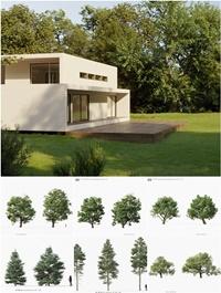 MAXTREE – Plant Models Vol 32