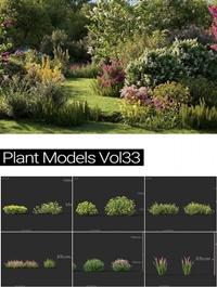 MAXTREE Plant Models Vol 33
