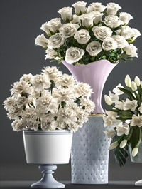 Collection of flowers 58 White bouquets