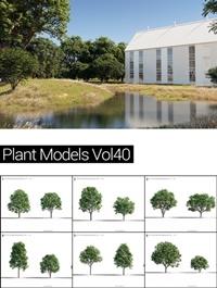 MAXTREE Plant Models Vol 40