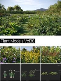 MAXTREE Plant Models Vol 38