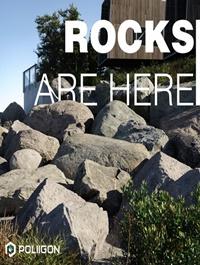 Poliigon Rock Models