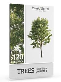 Forest Digital Trees Vol. 1