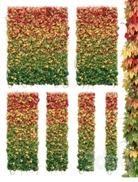 Wall from autumn leaves Set of 6 models