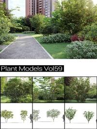MAXTREE Plant Models Vol 59