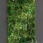 Vertical gardening 010