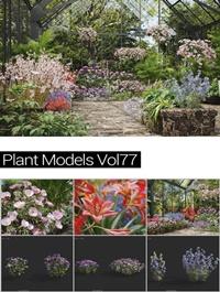 MAXTREE Plant Models Vol 64