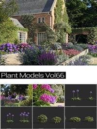MAXTREE Plant Models Vol 66