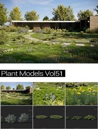 MAXTREE Plant Models Vol 51