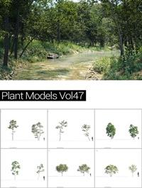 MAXTREE Plant Models Vol 47