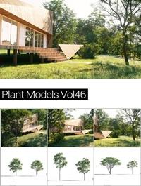 MAXTREE Plant Models Vol 46
