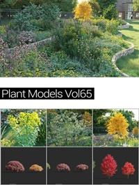 MAXTREE Plant Models Vol 65
