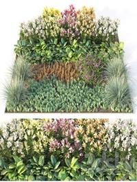 Flower garden 3