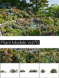 MAXTREE Plant Models Vol 70
