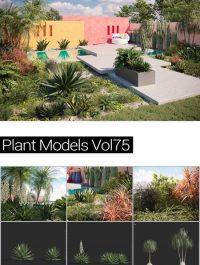 MAXTREE Plant Models Vol 75