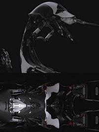 Cyber Scorpion Bot